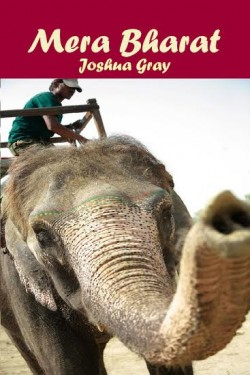 Mera Bharat (My India) by Joshua Gray